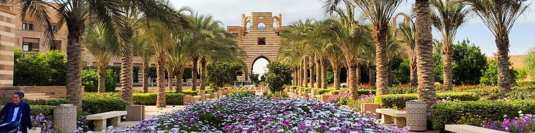 Jobs   The American University in Cairo