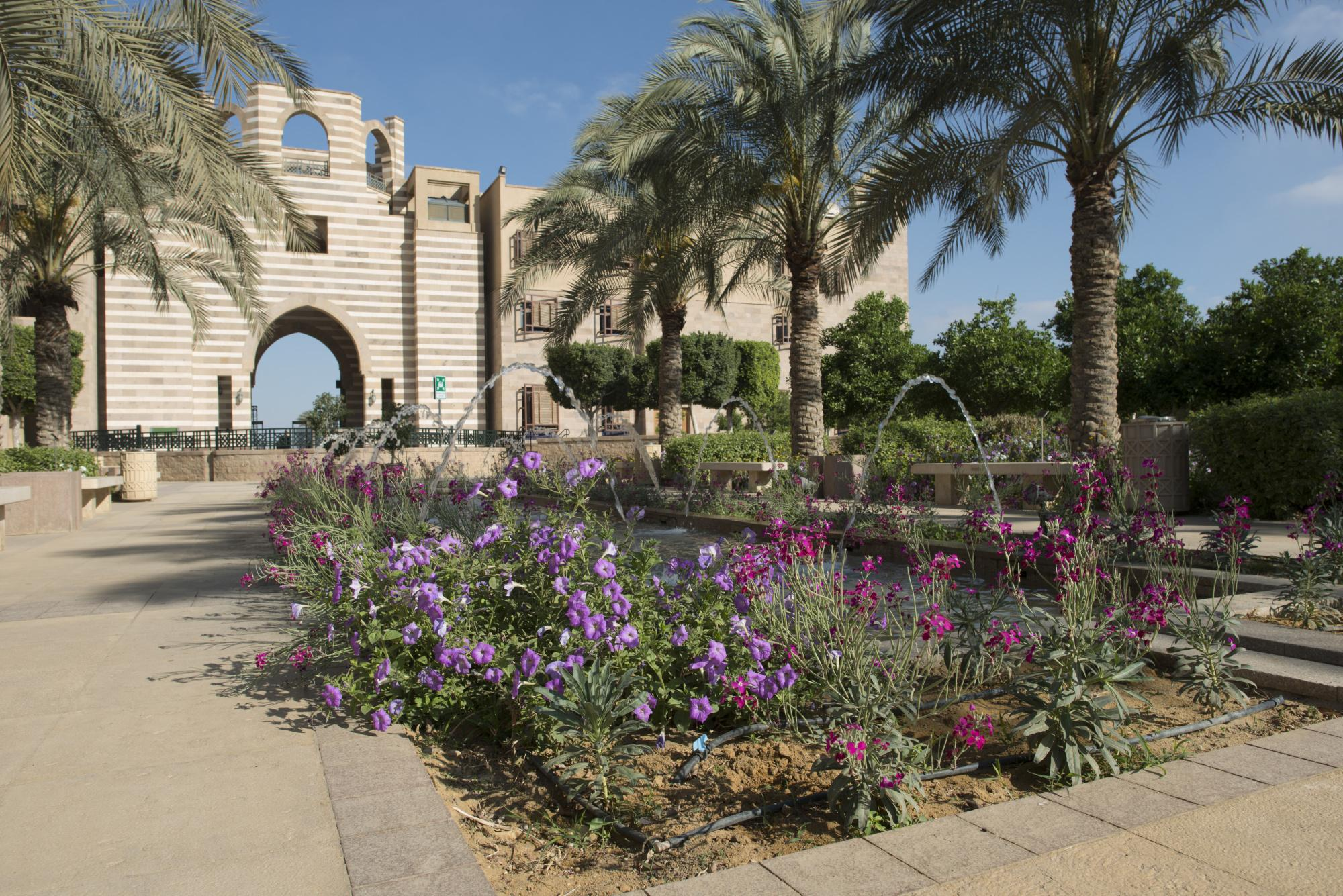 auc-new-cairo-campus