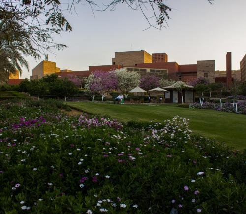 Hassan is a winner of the #AUCinBloom photo contest, showcasing the New Cairo campus in full spring bloom