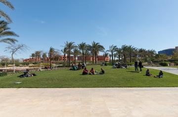 AUC New Cairo Campus - Garden and Residence View
